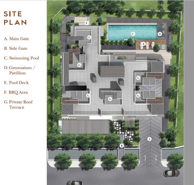 38 Jervois site plan